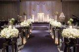 常熟理文铂尔曼酒店首推婚宴套餐  非凡婚礼 永恒记忆