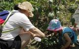 蔬果总动员!伟才国际幼儿园秘密基地探索成功!