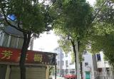 报慈新村一区