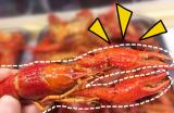 常熟吃龙虾新地标!今夏第一份龙虾是在漫天星空下嘬完的