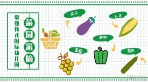 蔬果总动员!常熟宝贝快来伟才国际幼儿园探索秘密基地