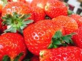 精品草莓限量抢购,你尝过鲜了吗?