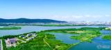 尚湖和东南优先考虑哪个?之前说的金茂怎么没有声音了?