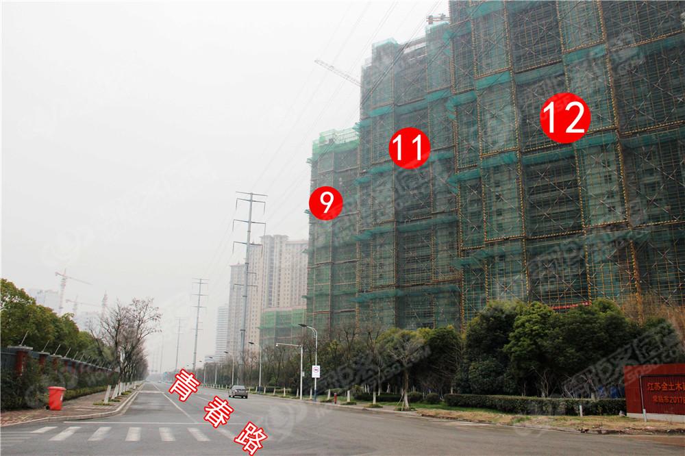 滨江铂郡,滨江,零距离六合开奖结果直播网,工程进度
