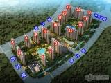 中南锦苑16-19、22号楼迎交房 小区绿化彰显细节